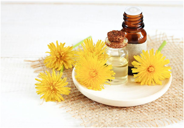 Reasons Why Safflower Oil