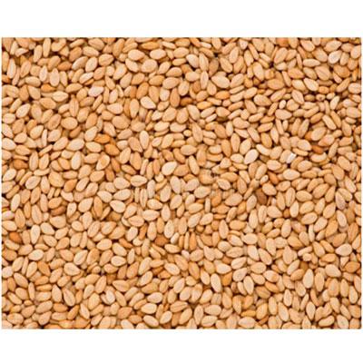 Sesame seeds For Light Periods