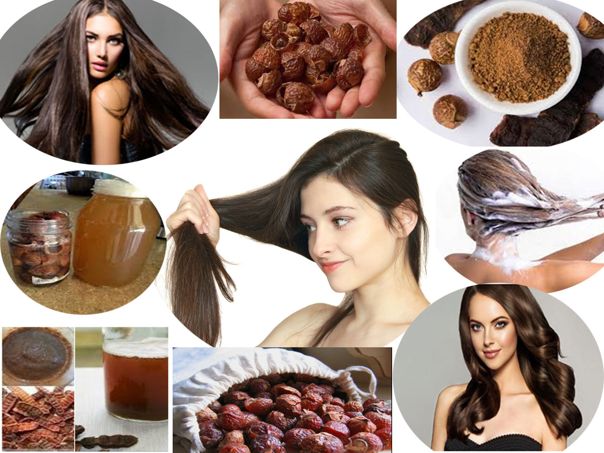 Replace Your Shampoo With Shikakai (Acacia Concinna) Or Soapnut (Reetha)