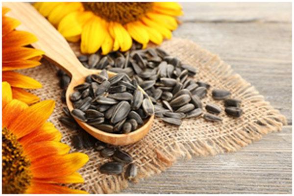 Saffron And Sunflower Seeds Pack