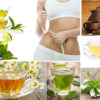 Best Herbal Homemade Teas for Weight Loss
