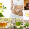 Best Herbal Homemade Teas for Weight Loss