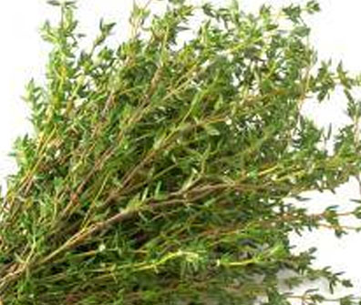 Thyme Leaves To Get Rid Of Burning In Feet