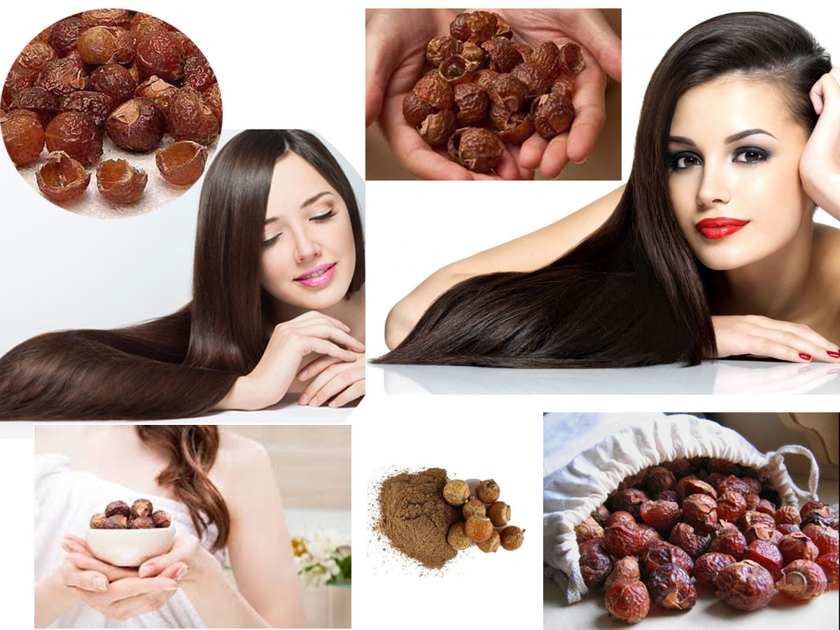 Wonderful Benefits Of Using Soap Nuts (Reetha) For Hair